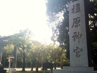 2011_kashihara_01