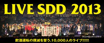 Sdd2013_3