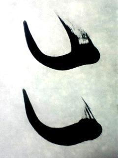 090803_193501