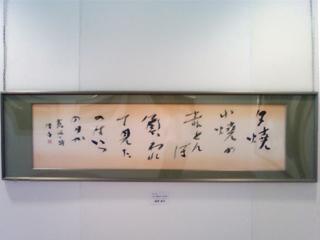 Kamiichi014